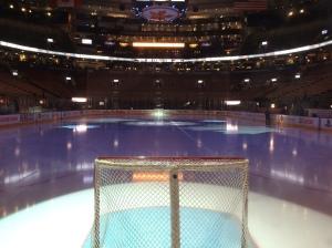 Leafs net